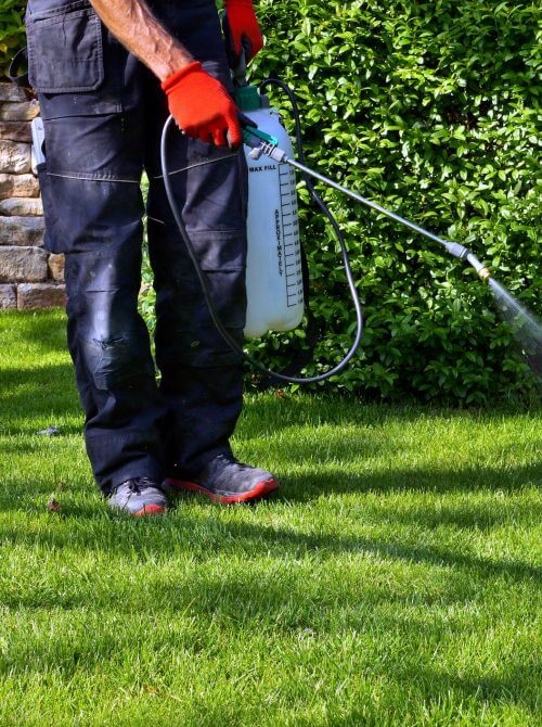 landscaping design Calgary - weed spray