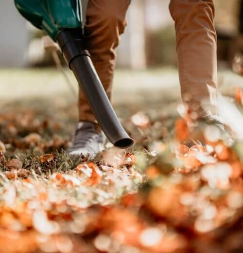 Property Maintenance Calgary - fall cleanup